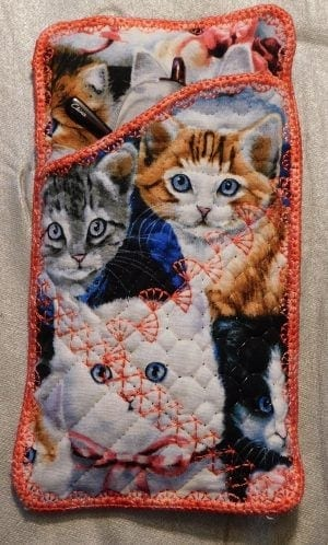 Kittens Glasses Case